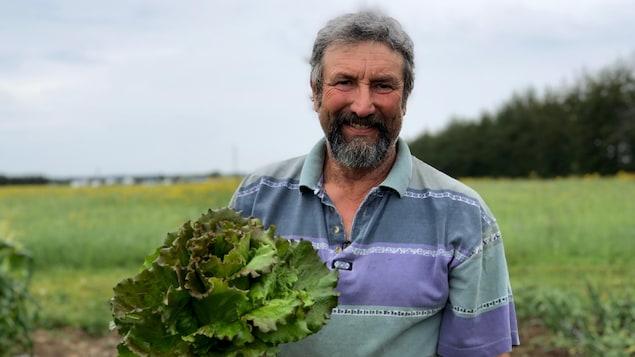 Jean-François Robert dans son champ de salade.