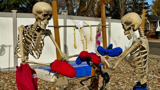 Deux squelettes participent à combat de boxe.