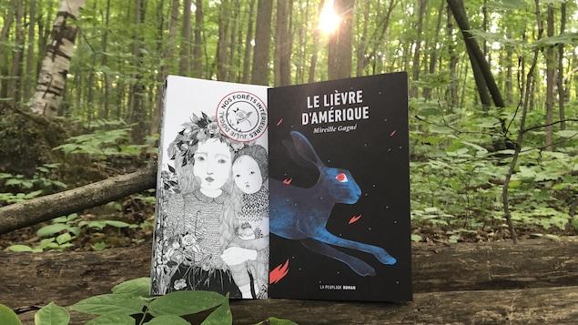 Les deux livres sont debout sur un tronc d'arbre au sol, dans la forêt. Une percée de soleil à travers les feuillus semble braquer un projecteur arrière sur les livres.