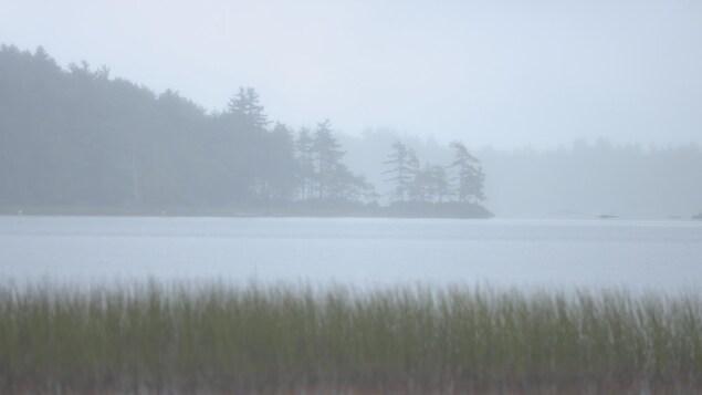 Le paysage est à peine perceptible sous l'épais brouillard.