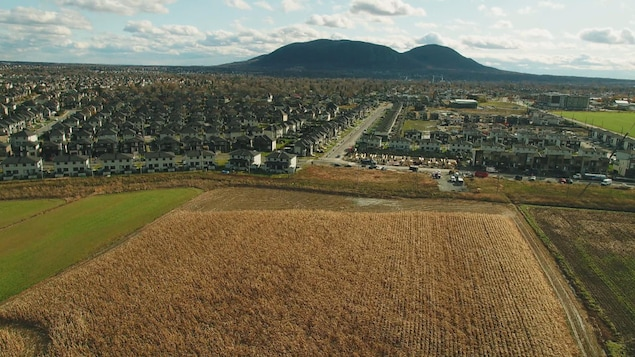 Image aérienne d'un champs près d'une ville en Montérégie.