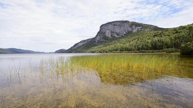 Ce grand secteur forestier comporte aussi plusieurs lacs.