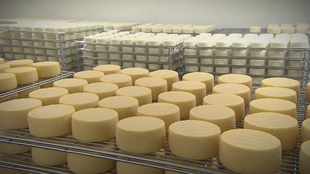 Les fromagers industriels réussissent à congeler d'importantes quantités de fromage.