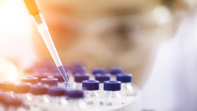 Essais en laboratoire de recherches médicales.