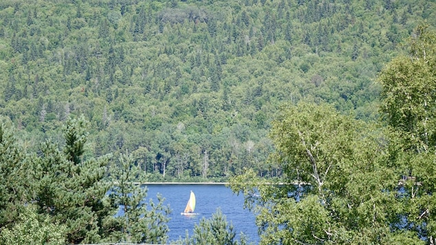 Un voilier sur le lac Pohénégamook