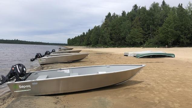 Des chaloupes à moteur sur une plage au bord d'un lac.