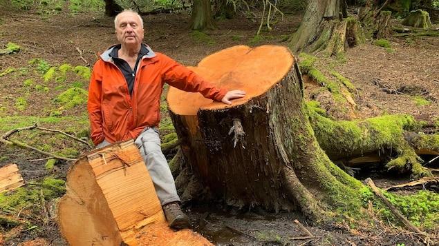 Un résident de North Cowichan, Larry Pynn, pose devant une souche d'arbre coupé.