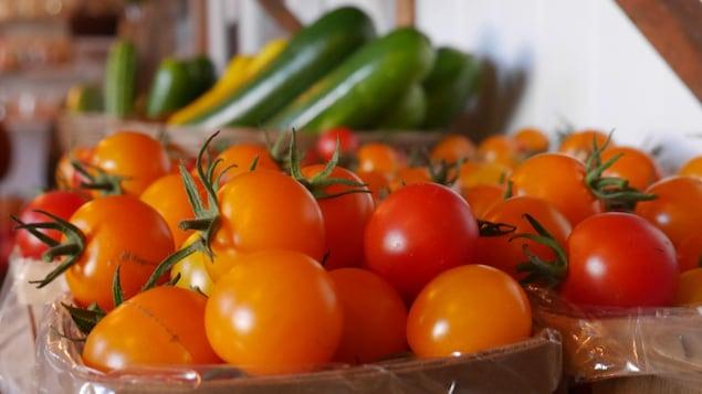 Boîtes de tomates et de courgettes