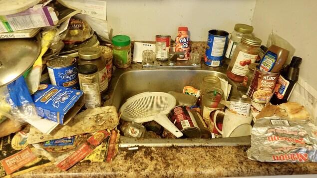 L'évier de cuisine est complètement recouvert de déchets divers et d'aliments. Des traces de moisissure sont aussi visible sur le mur.