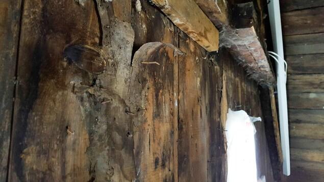 Les murs portent les marques de l'usure du temps.