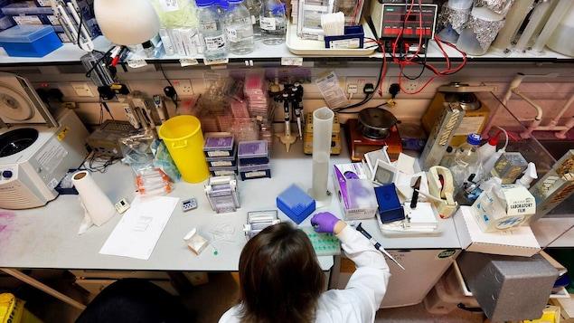 Un ou une scientifique dans un laboratoire.