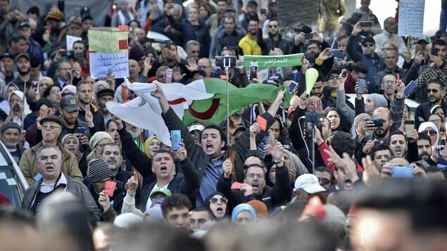 Des manifestants portant le drapeau algérien