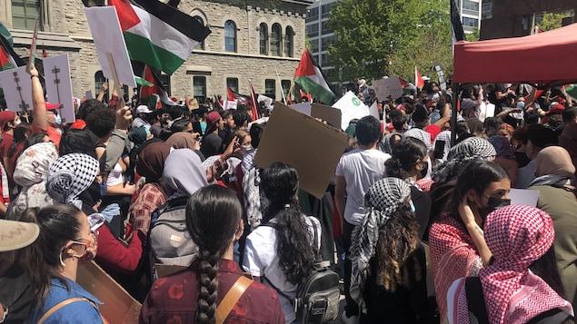 Des manifestants portant le masque sont réunis et certains brandissent le drapeau palestinien.