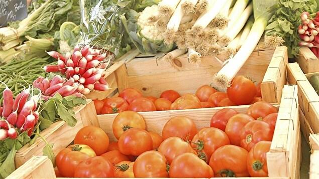 Des légumes en vente sur un marché public.