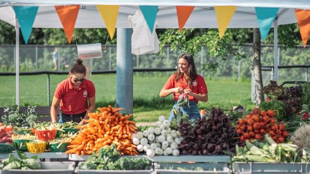 Deux femmes se trouvent derrière un étal rempli de légumes.