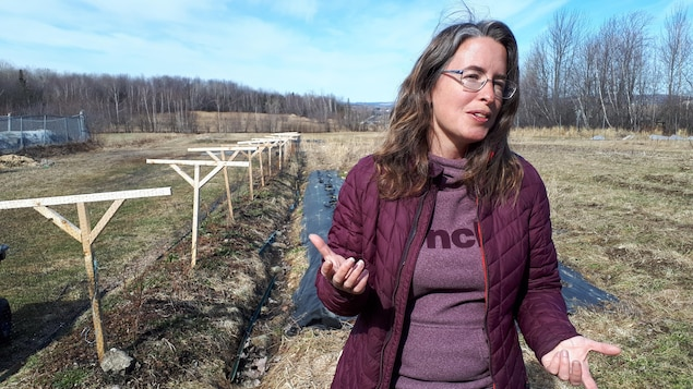 Mélanie Chapleau dans un champs.
