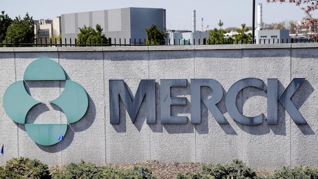 Mur gris d'enceinte de l'entreprise Merck