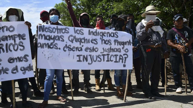 Des manifestants portent des pancartes.