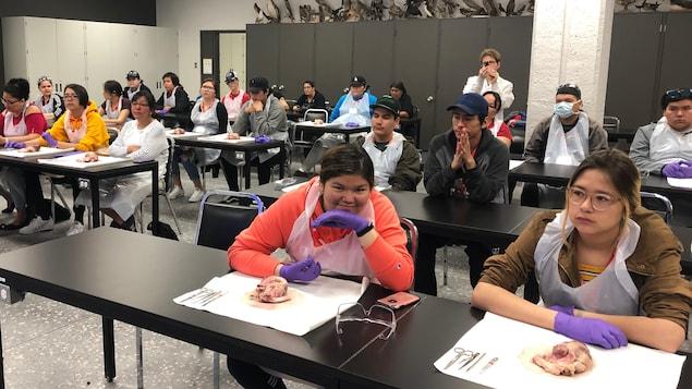 Des élèves assis à leur table de travail devant un organe de porc.