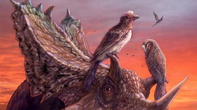 Représentation artistique d'un Mirarce eatoni perché sur les cornes d'un dinosaure cératopsien.