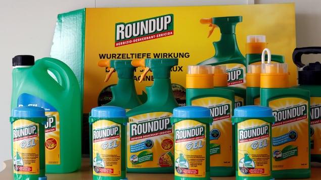 L'herbicide Roundup dans différents emballages.