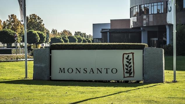 Le logo de Monsanto devant les bureaux de l'entreprise.