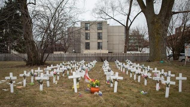Des dizaines de croix plantées sur la pelouse du centre.