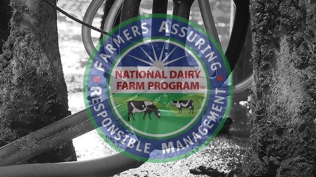 National Dairy FARM Program, USA