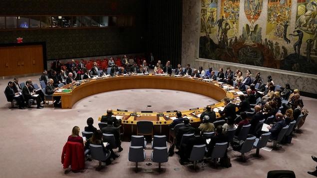 Une séance du Conseil de sécurité des Nations unies.