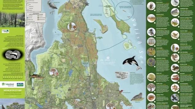 Une carte avec des informations sur des espèces d'animaux et de plantes.