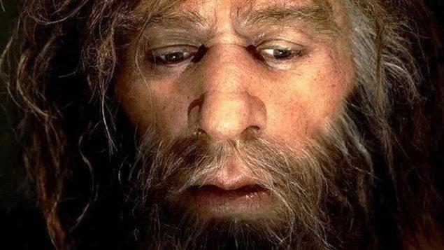 Reconstitution du visage d'un Néandertalien.