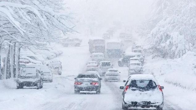 Voitures enneigées qui roulent sur de la neige