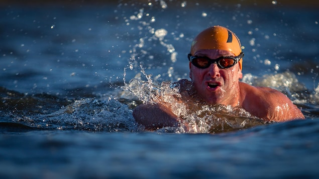Le nageur en eau libre, NIcolas Knap