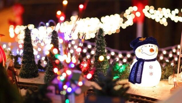 Un jardin illuminé de lumières de Noël.