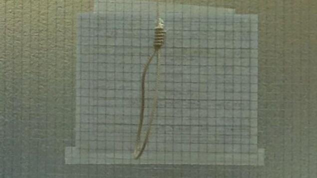 Un noeud coulant accroché sur une porte.
