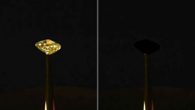 Un diamant recouvert du noir le plus noir.