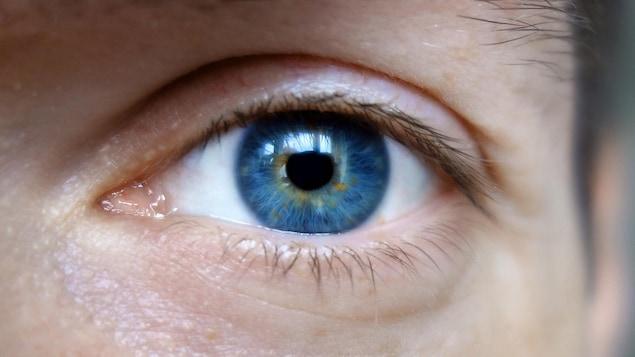 L'oeil d'un homme.