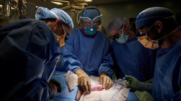 Une équipe de chirurgiens dans une salle d'opération.