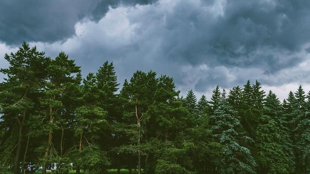 De mauvaises conditions météorologiques.