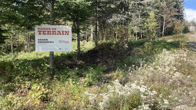 Une pancarte sur laquelle on peut lire «Gagne ce terrain». Elle est installée sur un arbre.