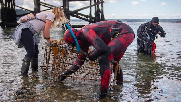 Deux plongeurs et une bénévole avec un panier d'épicerie remonté à la surface.