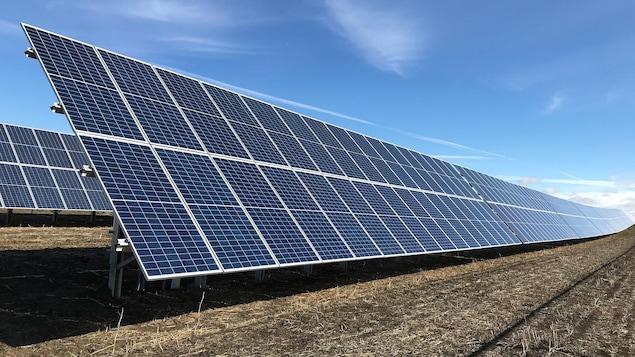 Des panneaux solaires installés sur une pelouse.