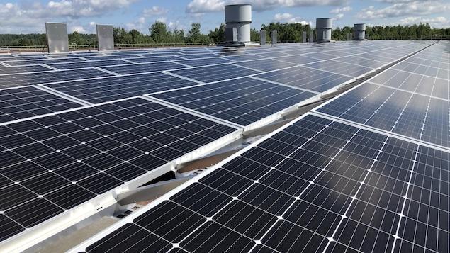 Des centaines de panneaux solaires sur le toit.