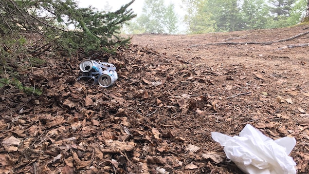 Des canettes de bière et du papier absorbant jonchent le sol d'un parc.