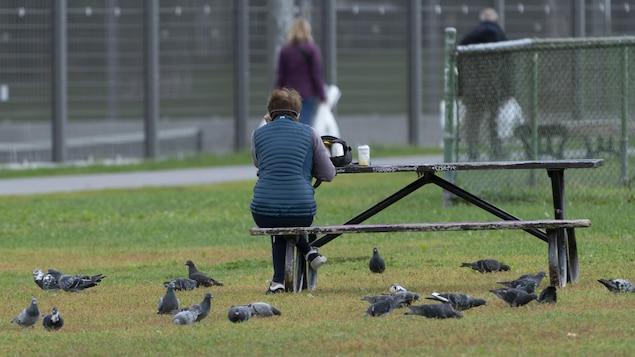 Une femme de dos dans un parc, assise seule à une table à pique-niquec-nic avec des pigeons à ses pieds.