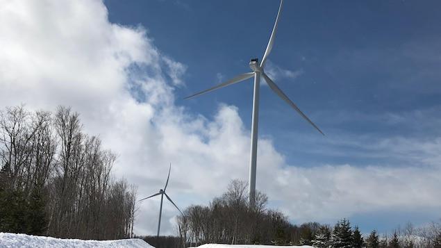 Deux éoliennes du parc éolien Nicolas-Riou.