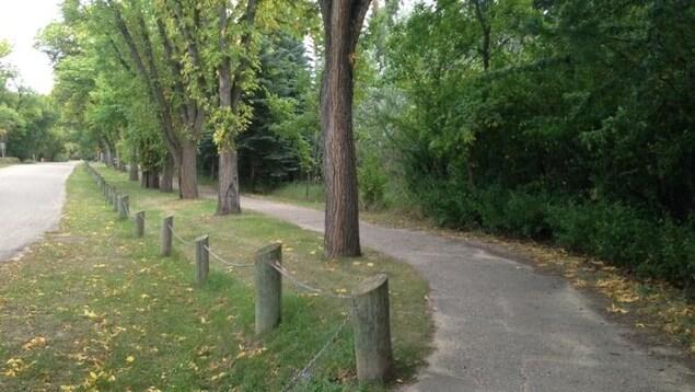 Un chemin pour les promeneurs dans le parc Wakamow Valley.