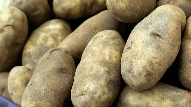 Des pommes de terre sur un étal.