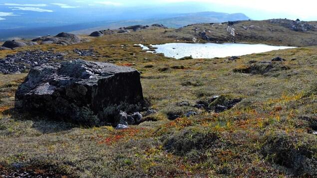 On voit au premier plan une roche, et, plus loin, une mare. En arrière-plan, la silhouette des lacs du secteur des monts Otish.