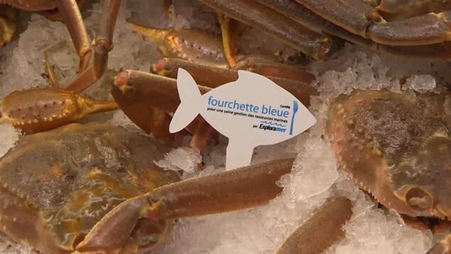 Un logo « Fourchette bleue » sur un crabe.
